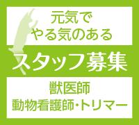 side-staff02